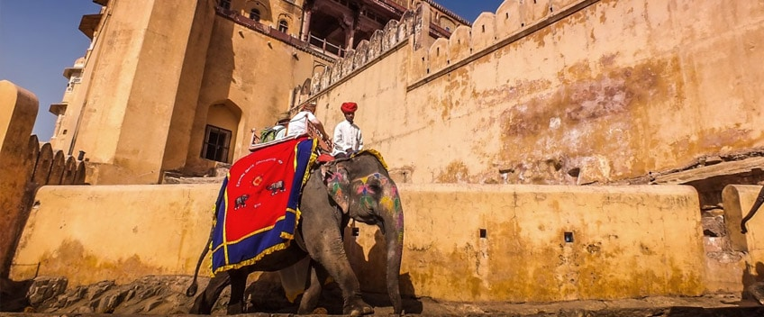 elephantride-jaipur